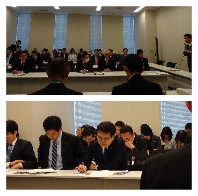 民進党エネルギー環境調査会